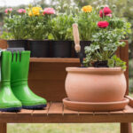 Wiosna w ogrodzie to czas wielu prac porządkowych.